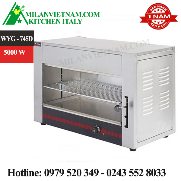 Lò nướng điện đa năng WYG-745D