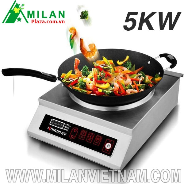 bếp từ công nghiệp 5kw